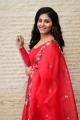 Heroine Anjali Cute Images @ Vakeel Saab Movie Success Meet