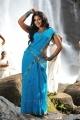 Actress Anjali Hot Spicy Blue Saree Photos in Masala Movie