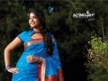 Tamil Actress Anjali in Silk Saree Photoshoot Stills