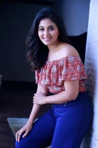 Vakeel Saab Movie Heroine Anjali Interview Photos