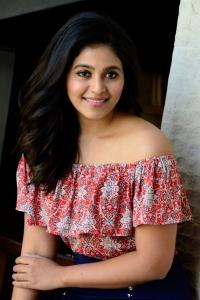 Vakeel Saab Actress Anjali Interview Photos