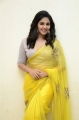 Vakeel Saab Movie Heroine Anjali Yellow Saree Photos