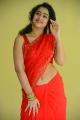 Ullala Ullala Movie Actress Anketa Maharana Red Saree Stills