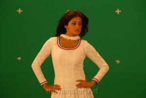 Anna Bond Actress Priyamani Stills