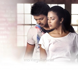 Actor Vijay, Actress Amala Paul in Anna Movie Photos