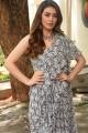 Actress Hansika Cute Pics @ Tenali Ramakrishna BA BL Teaser Launch