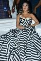 Actress Anu Emmanuel Hot Stills @ Naa Peru Surya Naa Illu India Pre Release