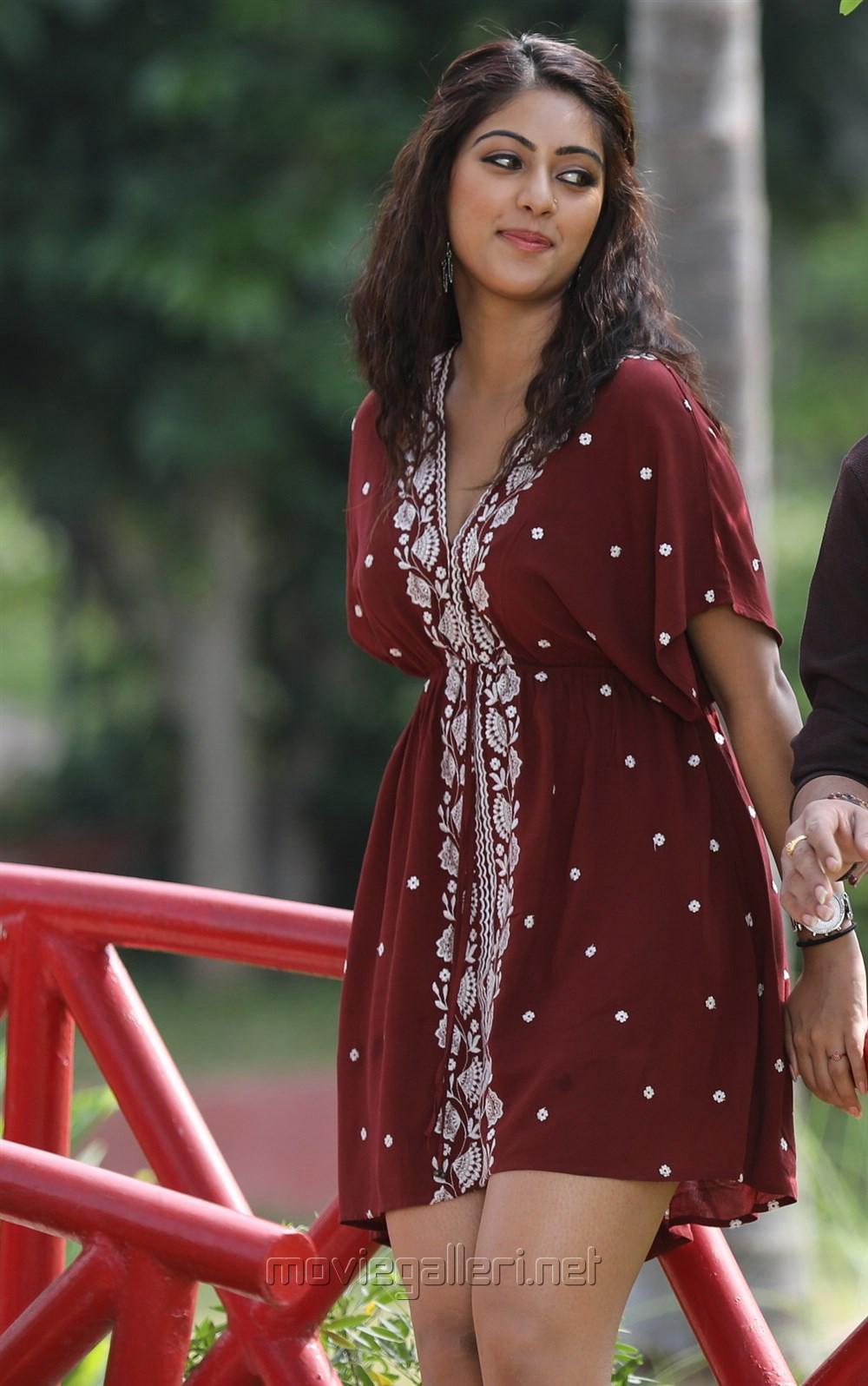 Picture 1164142 : Actress Anu Emmanuel Images in Kittu ...