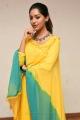 Shailaja Reddy Alludu Actress Anu Emmanuel Latest Stills