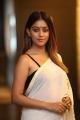 Actress Anu Emmanuel Hot Saree Latest Pics