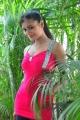 Telugu Heorine Anu Sri Spicy Photos