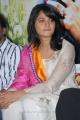 Beautiful Anushka Photos at Dhamarukam Success Meet Function