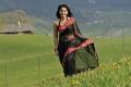 Damarukam Movie Actress Anushka Hot Stills