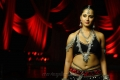 Telugu Actress Anushka Shetty Hot in Black Dress Photo