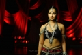 Telugu Actress Anushka Hot in Black Dress Photos