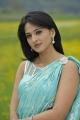 Actress Anushka Shetty Hot Saree Stills in Damarukam Movie