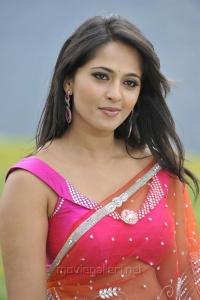 Actress Anushka in Saree Hot Stills in Damarukam Movie