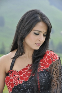 Beautiful Anushka Shetty in Saree Photos from Damarukam Movie
