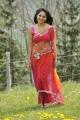 Actress Anushka Hot Saree Stills in Damarukam Movie