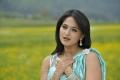 Beautiful Anushka in Saree Photos from Damarukam Movie