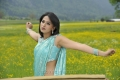 Damarukam Heroine Anushka Hot Saree Stills