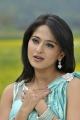 Gorgeous Anushka Shetty in Saree Photos in Damarukam Movie
