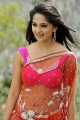 Telugu Actress Anushka Hot Saree Stills in Damarukam