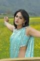 Actress Anushka in Saree Hot Photos in Damarukam Movie