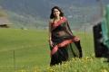 Damarukam Anushka Shetty Hot Black Saree Pics