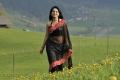 Damarukam Heroine Anushka Shetty in Black Saree Hot Pics