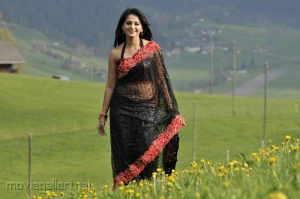 Acterss Anushka Shetty Spicy Hot Black Saree Pictures
