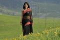 Actress Anushka Shetty Hot Transparent Black Saree Pics