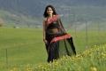 Anushka Hot Black Saree Photos in Damarukam Movie
