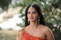 Actress Anushka Hot Stills in Rudhramadevi Movie