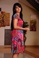 Anushka Shetty Ragada Photos