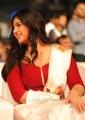 Actress Anushka Shetty Saree Photos at Baahubali 2 Pre Release