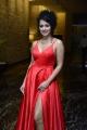 Actress Apsara Rani New Photos @ Krack Movie Pre Release