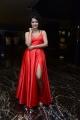 Actress Apsara Rani Photos @ Krack Movie Pre Release