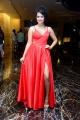 Actress Anketa Maharana New Photos @ Krack Movie Pre Release
