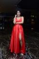 Actress Anketa Maharana Photos @ Krack Movie Pre Release