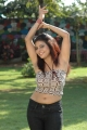 Actress Prachi Adhikari in Arakkonam Movie Hot Stills