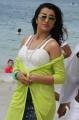 Actress Trisha Hot in Aranmanai 2 Images