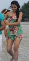 Actress Trisha Hot Bikini in Aranmanai 2 Movbie