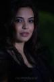 Adonika at Aravind 2 Movie Latest Stills