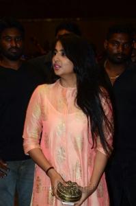 Aravinda Sametha Pre Release Event Stills