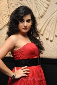 Actress Archana Hot Photos at Panchami Audio Release