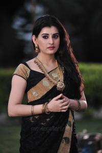 Anandini Movie Actress Archana Hot Saree Photos