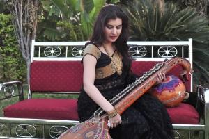 Anandini Actress Archana Saree Hot Photos