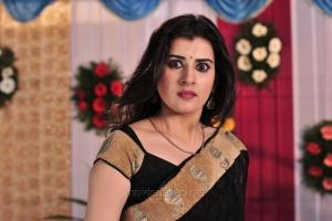 Anandini Actress Archana Veda in Saree Photos
