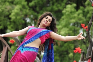 Actress Archana Hot Saree Photos in Anandini Movie